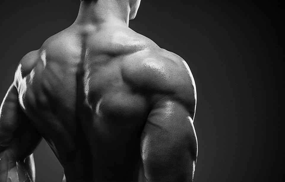Trening mięśni pleców